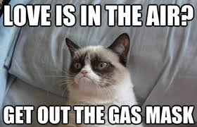 "Grumpy Cat meme: ""LOVE IS IN THE AIR? GET OUT THE GAS MASK"""