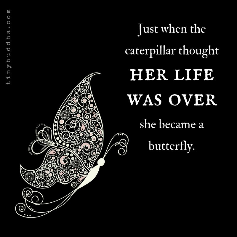 "Graphic: ""Just when the caterpillar thought her life was over, she became a butterfly."""