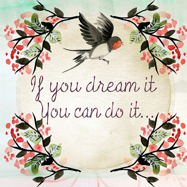 "Graphic: ""If you dream it, you can do it,"" via @amandatippytoes on Twitter"