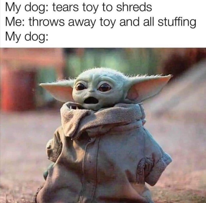 "Graphic: ""My dog - tears toy to shreds,"" shared via LisaBerne.com"