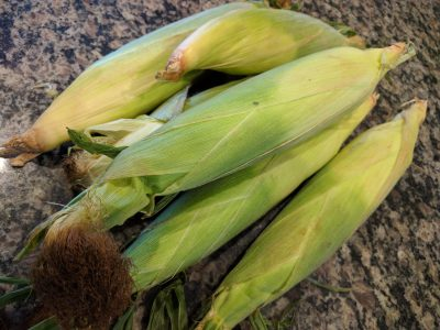 Photo: fresh summer corn. Via Lisa Berne, author of historical romance