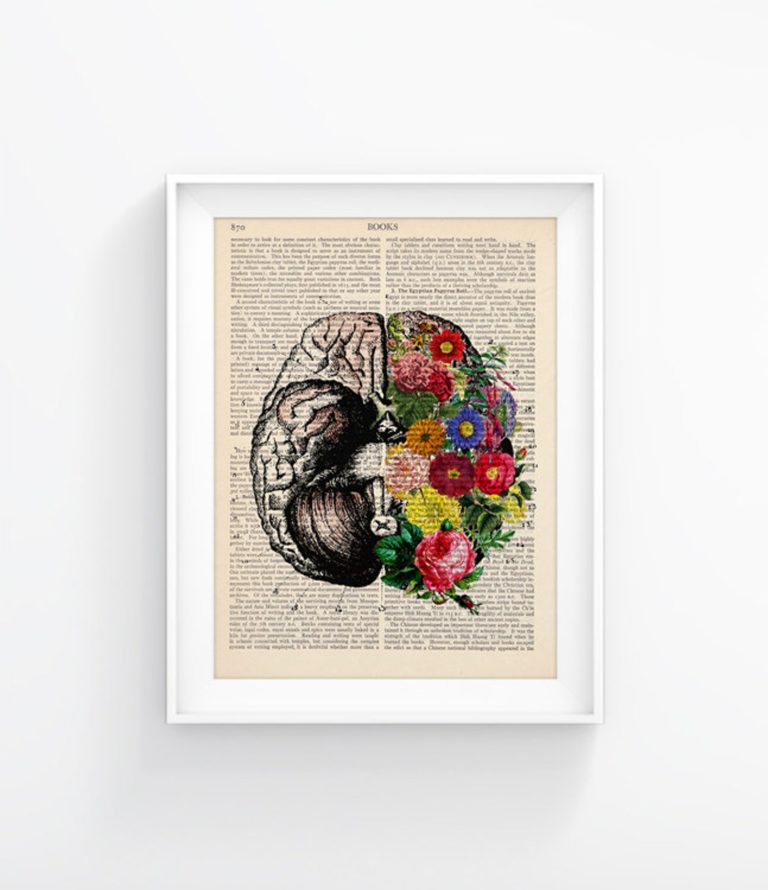 Artwork: the brain on books