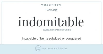"Graphic: ""Indomitable,"" shared via LisaBerne.com"