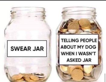 "Graphic: ""Swear jar,"" shared via LisaBerne.com"